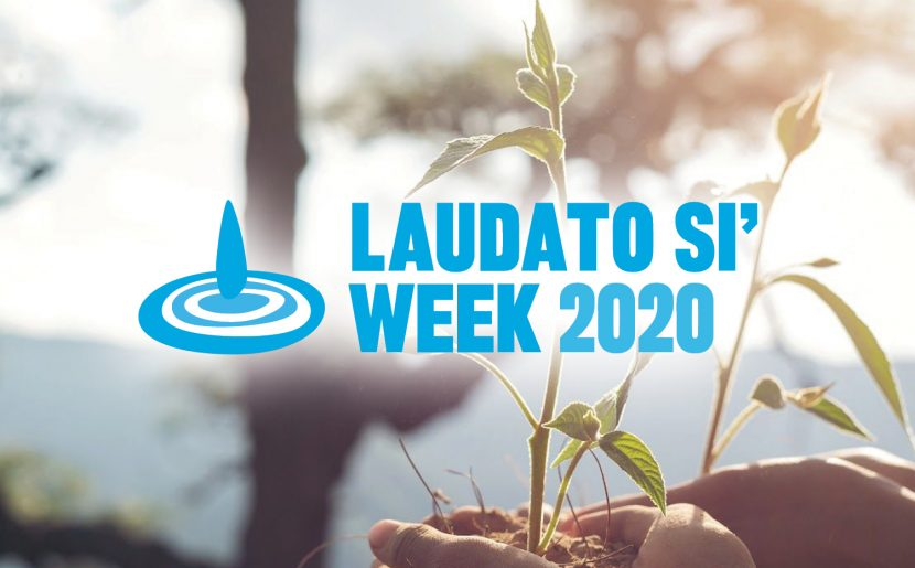 Laudato Sí Fifth Anniversary: A New Way To See What Really Matters