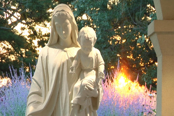 Feast Of The Assumption Brings Hope And Comfort During Anxious Times